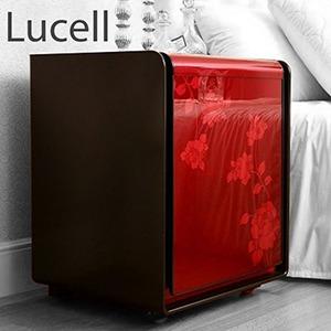 گاوصندوق لوسل 1۰۰۰ RW